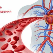 Нарушение кровообращения. Виды, симптомы, лечение