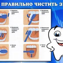 Правильно ли мы чистим зубы